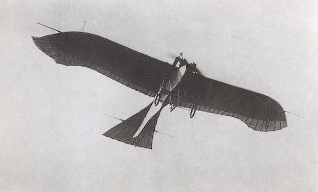 Samolot Taube w czasie lotu.