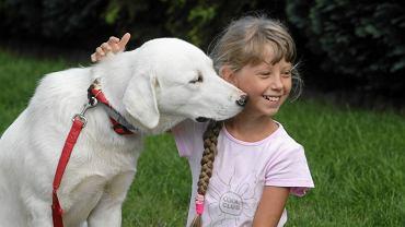 Szewce, 24 sierpnia 2016 roku. 10-letnia  Patrycja Dudek z uratowanym bezdomnym psem z Grecji