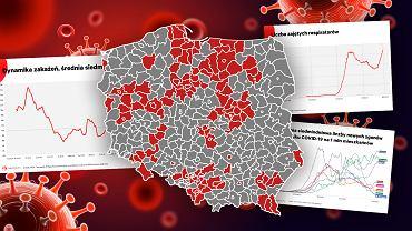 Koronawirus w Polsce. Trzy ponure wykresy i jedna mapa. Tuż przed lockdownem jest bardzo źle