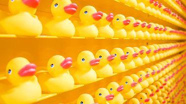 Blokada Kanału Sueskiego. Ta sama firma w 1992 roku 'zgubiła' na oceanie 28 tys. gumowych kaczek