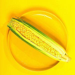 Sezon na kukurydzę