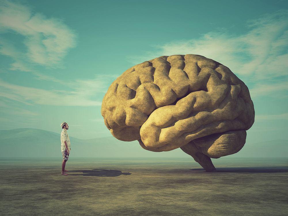 W jaki sposób mózg tworzy pamięć?