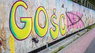 Drugi mural wykonany w ramach projektu 'Regio-mural Kliszczacy' został zniszczony przez anonimowego wandala