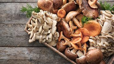 Czy warto jeść grzyby? Pewnie, że tak! Sprawdź, jakie wartości odżywcze mają grzyby. Zdjęcie ilustracyjne