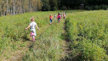 'Przedszkole leśne' utworzyła łódzka fundacja Dmuchawiec