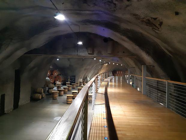 Szipczanik - największa winnica w Europie w jednym kawałku