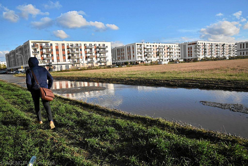 Rok 2016, osiedle Young City w rejonie ul. Batalionów Chłopskich na Chrzanowie. Na pustych działkach miało powstać osiedle Young City 2.
