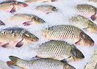 Jak wybrać rybę, aby była świeża, choinkę, żeby nie sypały się z niej igły, i wino do karpia