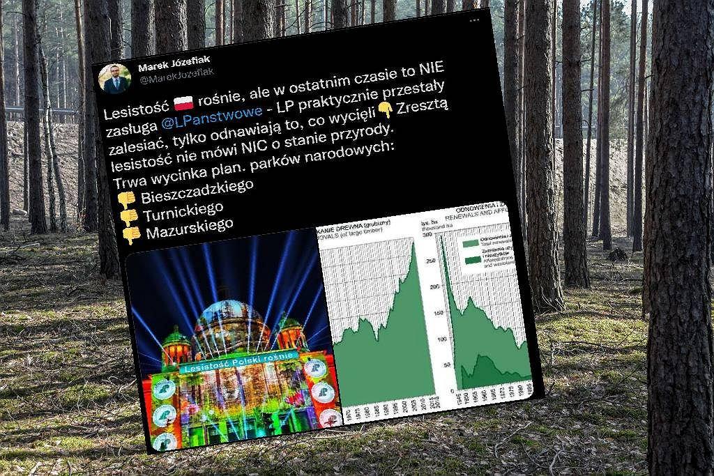 Lasy Państwowe kontra aktywiści