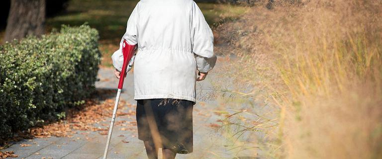 Czternasta emerytura. Wciąż nie wiadomo, co z realizacją obietnicy PiS