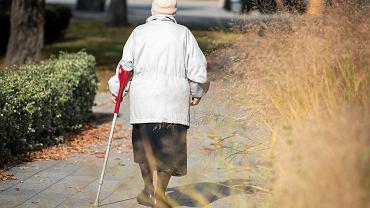 Emeryci jako jedyna grupa wiekowa zmniejszyli swoje długi. Spadły o 100 mln zł