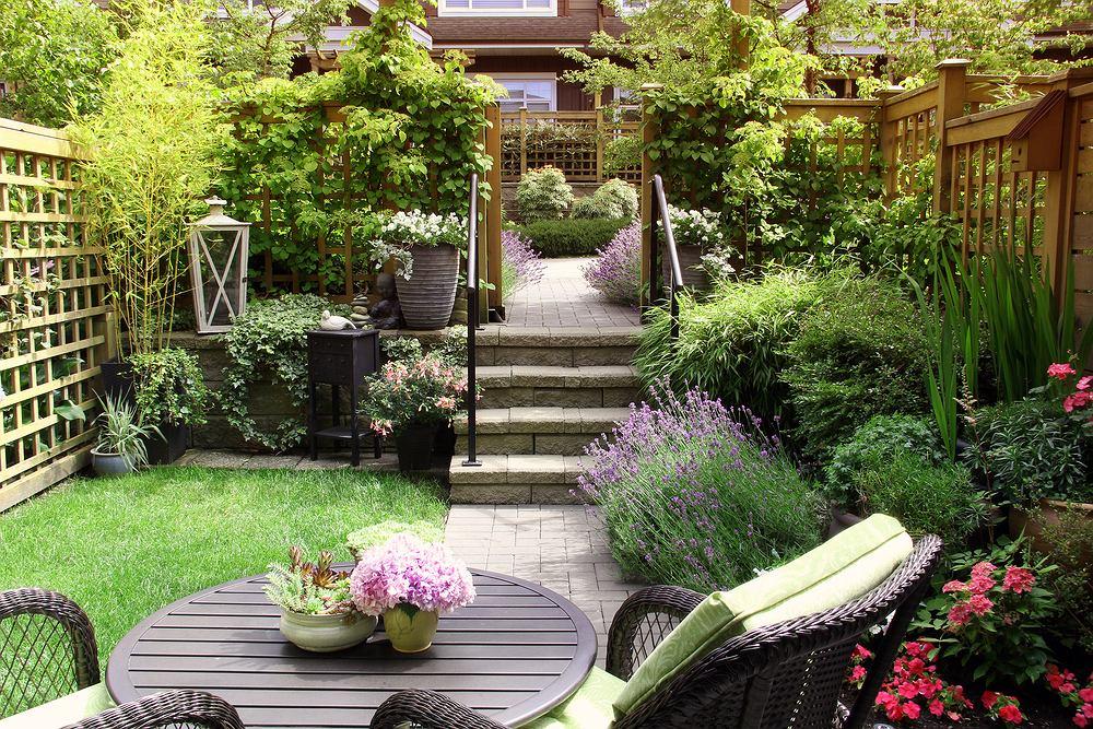 Rośliny do małego ogrodu. Zdjęcie ilustracyjne