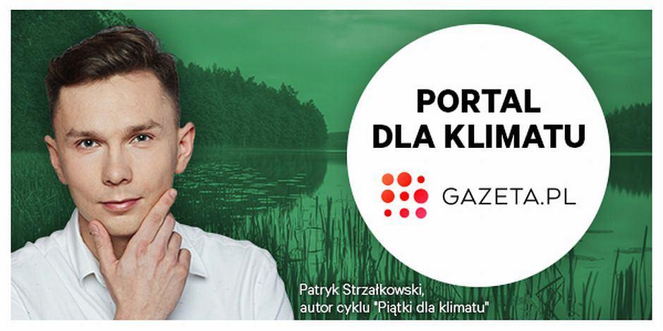 Zielona.Gazeta.pl