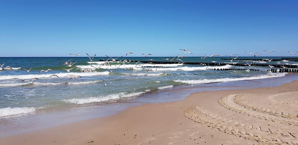 Plaża między Kołobrzegiem a Gąskami