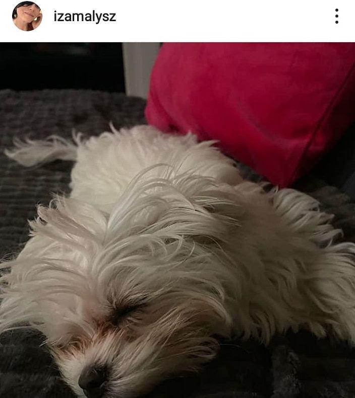 Instagramowy profil Izy Małysz