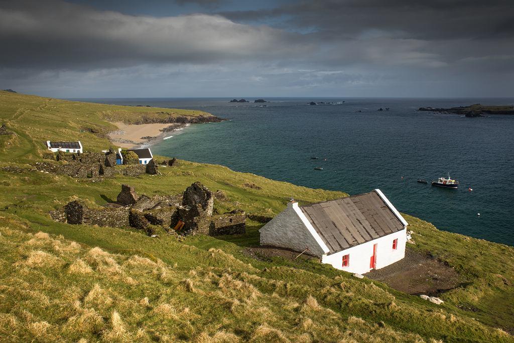 Praca marzeń? Mała irlandzka wyspa szuka osób do prowadzenia kawiarni
