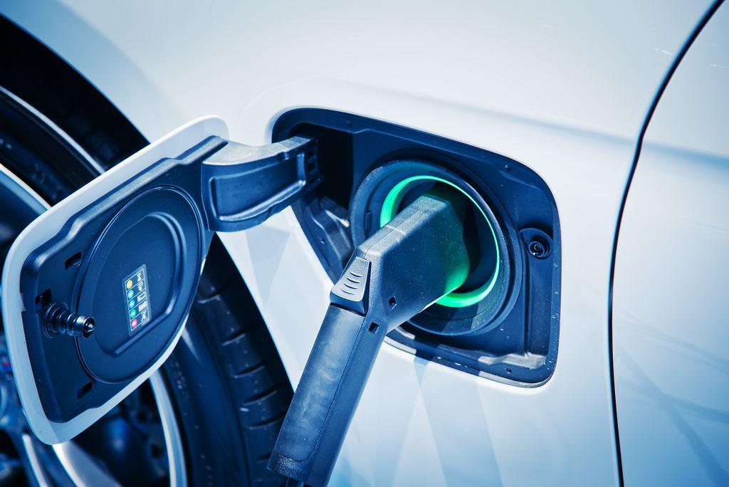 Wśród firm korzystających z usług consultingowych z pewnością są BMW, Daimler i Volkswagen - trzy koncerny, które właśnie próbują wymigać się z obietnicy budowy sieci 15 tys. stacji ładowania samochodów elektrycznych w Niemczech.