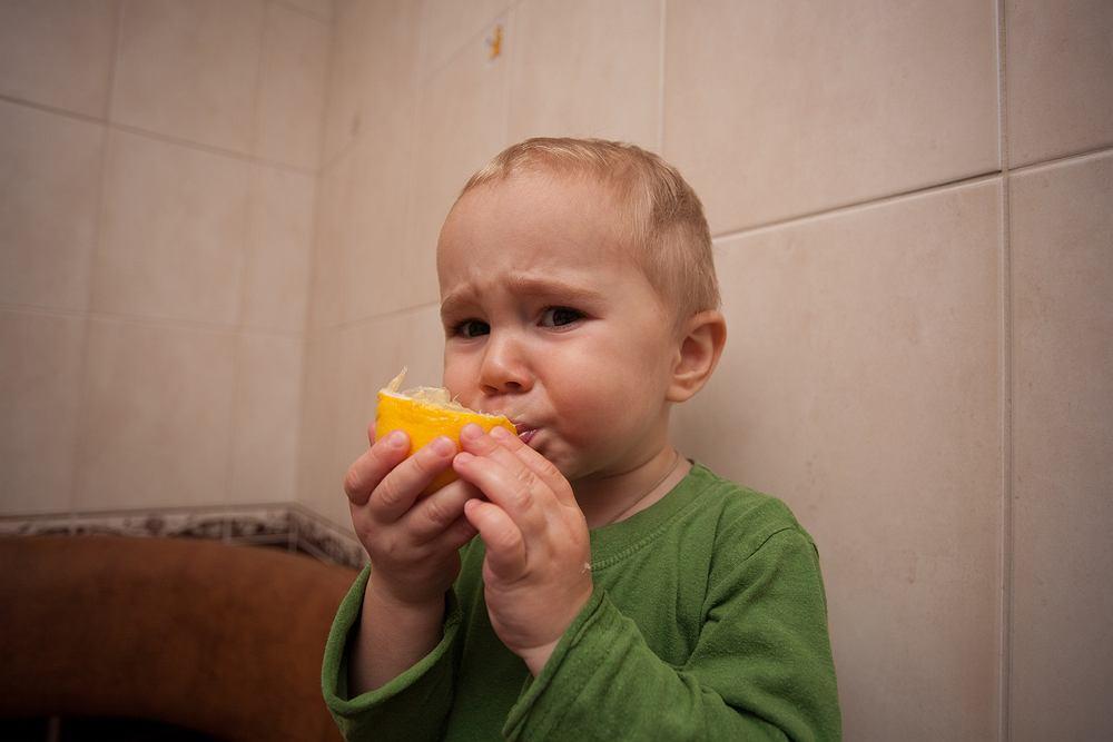 Dlaczego krzywimy się, kiedy jemy cytrynę? Naukowcy mają pewne podejrzenia