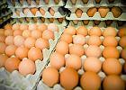 Ceny jajek biją rekordy. W miesiąc zdrożały o 50 proc.