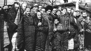 Więźniowie KL Auschwitz wyzwoleni w styczniu 1945 r. przez żołnierzy Armii Czerwonej. Zdjęcie wykonane po wyzwoleniu obozu.