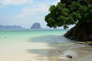 Afryka dzika czy piękna Tajlandia? Wyglądamy za granicę