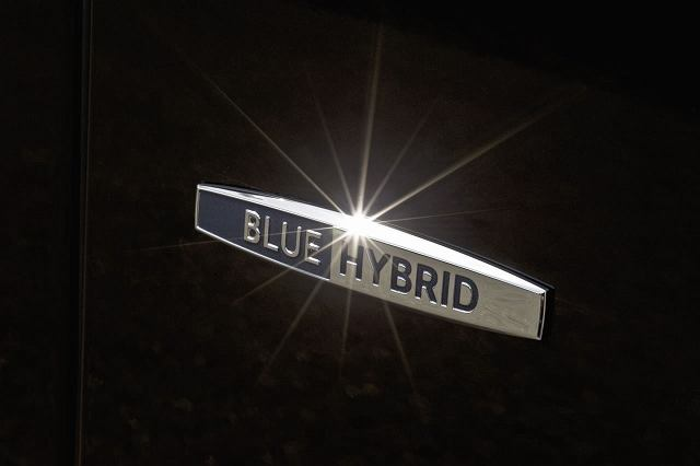 BlueHYBRYD