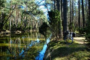 Polska przyroda: Bory Tucholskie na rowerze - najpiękniejsze wiosną