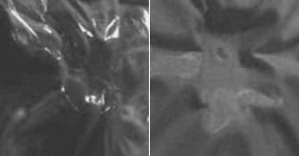 Po lewej - sam Kevlar, po prawej Kevlar z płynem nienewtonowskim