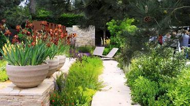 """Ogród - """"wspomnienie z wakacji"""". Wystawa Chelsea Flower Show 2010. W tym ogrodzie zwykłe Irysy stają się wyjątkowe, dzięki eleganckiej oprawie donic"""