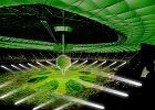 Gwiazdy i orgia świateł na otwarcie Stadionu Narodowego