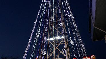 Choinka to tak naprawdę przystrojona światełkami wieża obserwacyjna