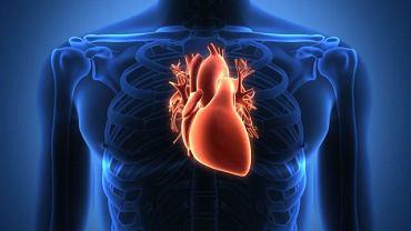 Wzrost enzymów sercowych najczęściej obserwuje się u pacjentów z zawałem serca