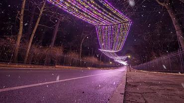 Warszawa w święta
