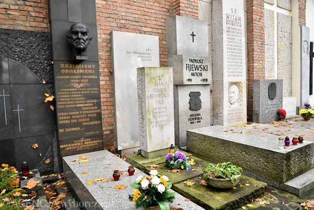 Zdjęcie numer 18 w galerii - Wszystkich Świętych. Tu spoczywa Władysław Reymont i Wojciech Młynarski. Groby w Alei Zasłużonych na Starych Powązkach [ZDJĘCIA]