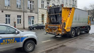 Łódź. Chomik znaleziony w kontenerze na śmieci