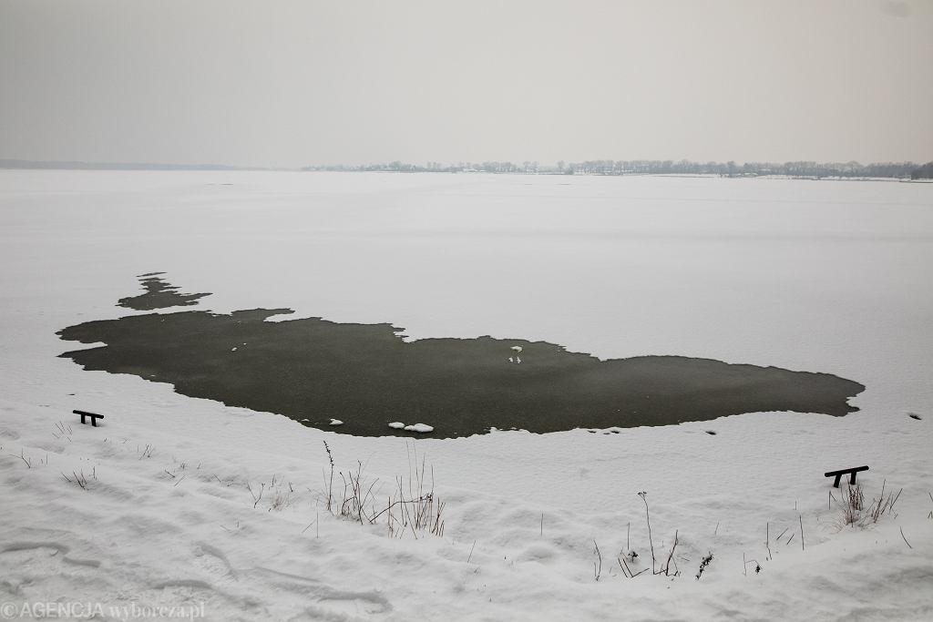 Martwe zwierzęta wyciągnięto z jeziora (zdj. ilustracyjne)