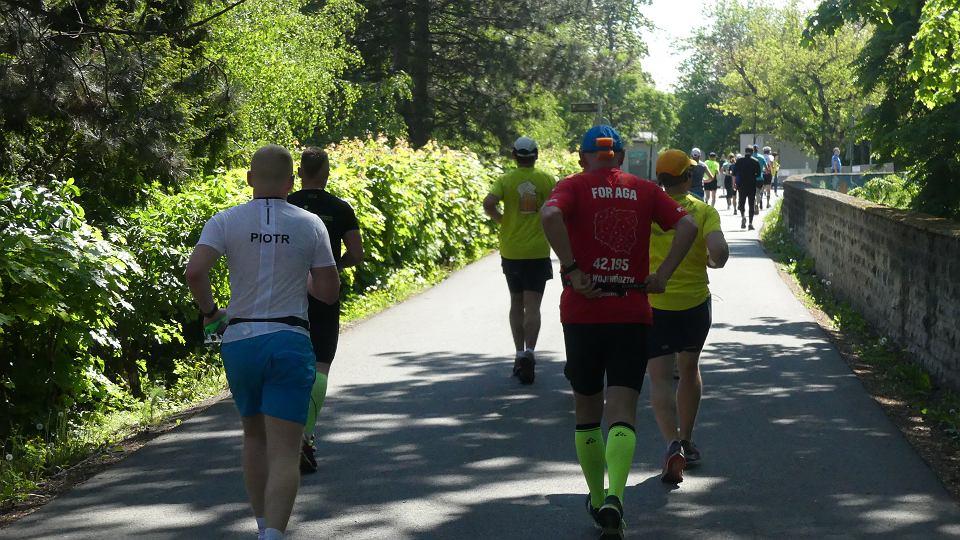 ca82796c Zdjęcie numer 2 w galerii - Święto biegaczy. 9. Maraton Opolski na ulicach  miasta