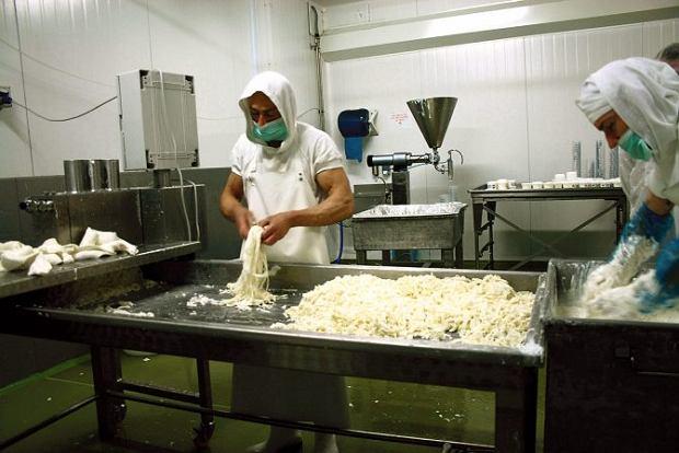 Produkcja serów - parę w rekach trzeba mieć!