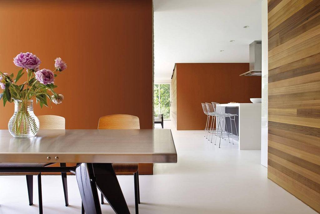 Ciepłe kolory do kuchni i jadalni
