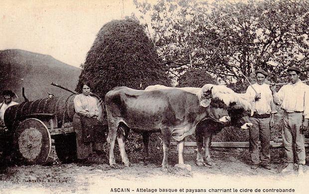 Kontrabanda baskijskiego cydru (pocz. XX w.)