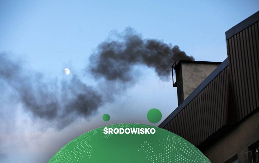 dymiące kominy (zdjęcie ilustracyjne)