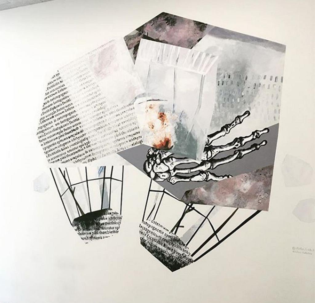 Praca Emilii Dudziec we wnętrzu Biblioteki Głównej Uniwersytetu Medycznego