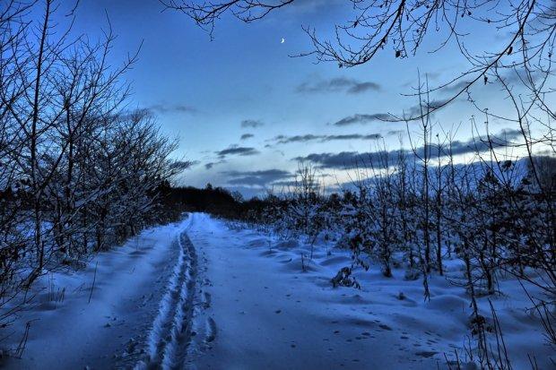 Trójmiejski Park Krajobrazowy / fot. Szymon Nitka Flickr.com CC BY-SA