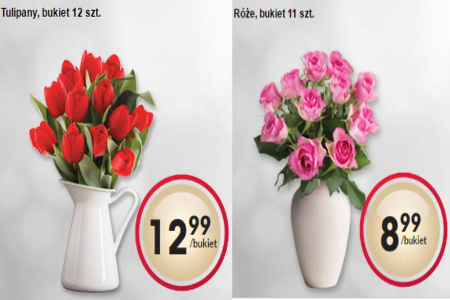 Kwiaty w Biedronce. Które rośliny doniczkowe znajdziemy w nowej ofercie?