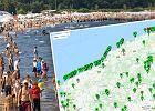 Zastanawiasz się, czy w Bałtyku wykąpiesz się bez obaw? Powstała mapa, która pokazuje czystość wody