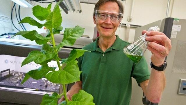 Christer Jansson z Berkeley Lab