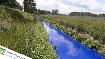Niebieska woda pod Poznaniem