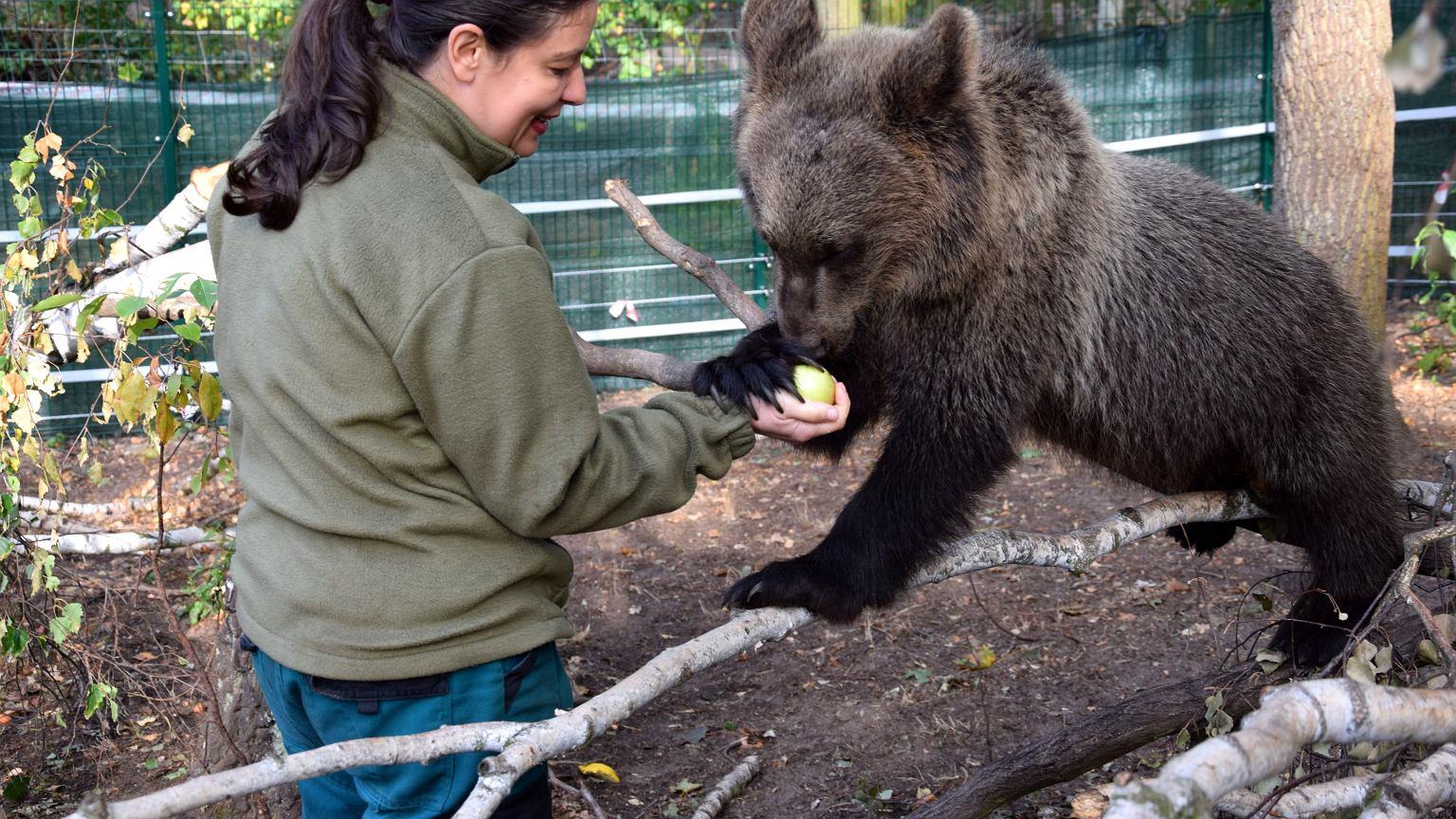 Ewa Zgrabczyńska w Zoo