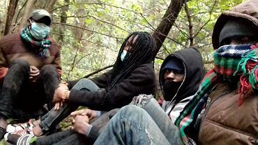 Czworo niepełnoletnich Kongijczyków od 5 dni błąkało się po lesie przy granicy polsko-białoruskiej. Zostali odnalezieni w pobliżu miejscowości Nowy Dwór (powiat sokólski)