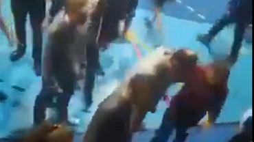 Chuligani brutalnie przerwali turniej charytatywny